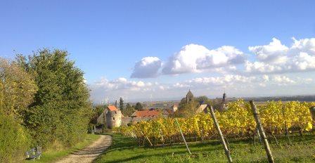 Ein schöner Blick auf den Ortsteil Dalsheim
